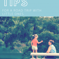 Roadtrip Tips for Traveling with Little Ones